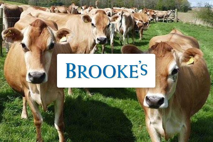 Brooke's Dairy
