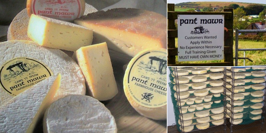 Pant Mawr Cheese Company