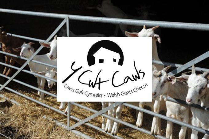 Y Cwt Caws