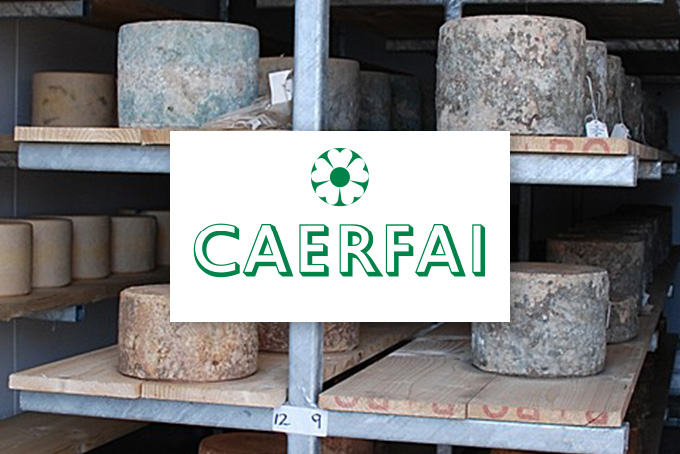 Caerfai Farm
